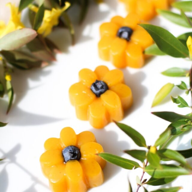 https://simplydelish.net/wp-content/uploads/2021/04/Unflavored-Jel-Passion-Fruit-Flowers-closeup-640x640.jpg